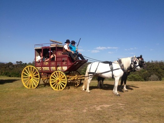 Cobb_Co_horse_rustic_carriage_Victoria