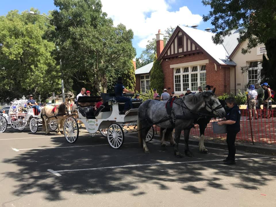 Horse_Carriages_Berwick