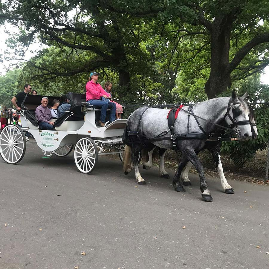 Lost_Trades_Fair_horse_carriages_Melbourne